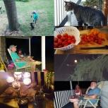 Summer time on the farm.