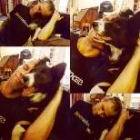 Abbey loves Stan!